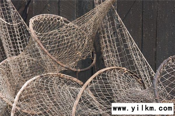 梦见渔网是什么意思