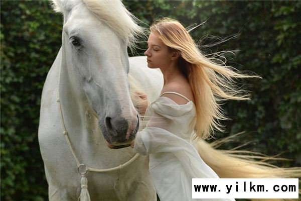梦见给马梳毛是什么意思