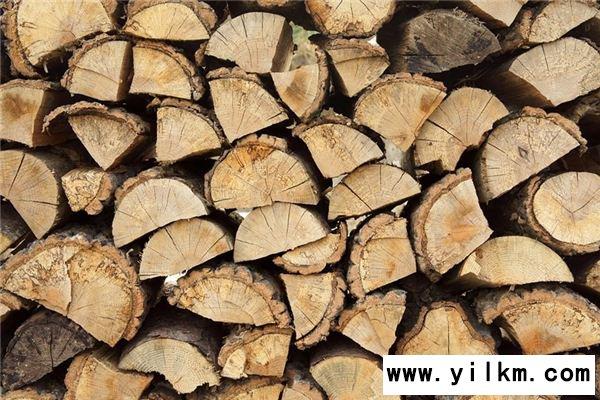 梦见木柴是什么意思