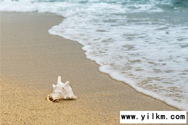 梦见海岸是什么意思