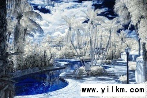 梦见雪有足迹或融化