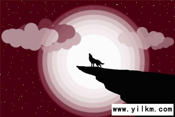 梦见狼叫是什么意思