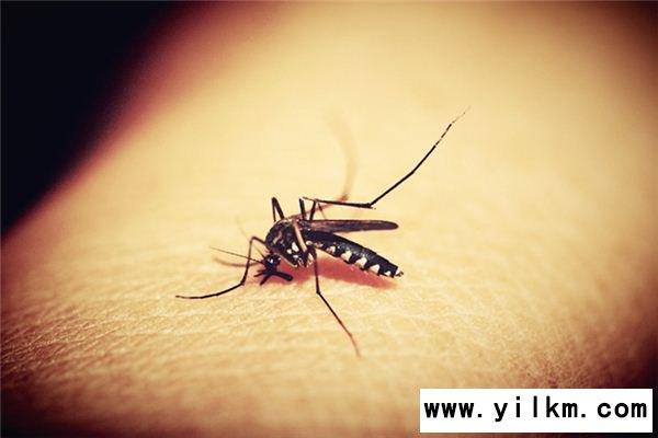 梦见被蚊子咬是什么意思